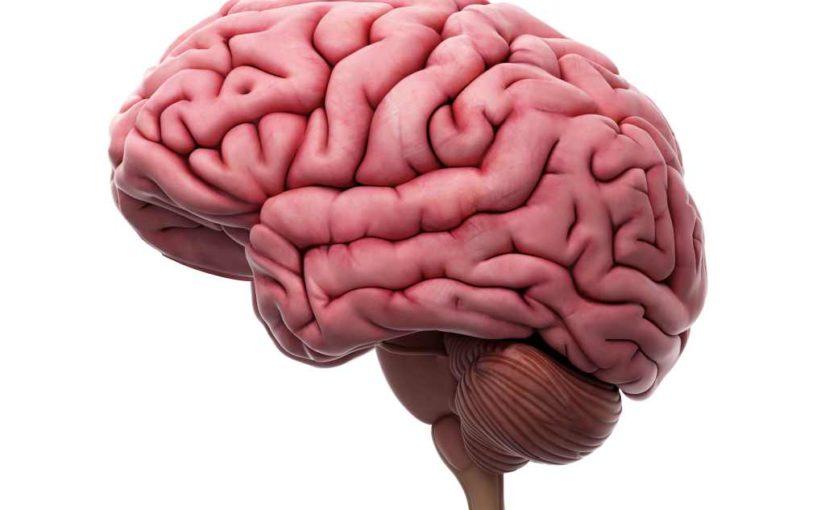 Kebiasaan ini dapat merusak bagian otak
